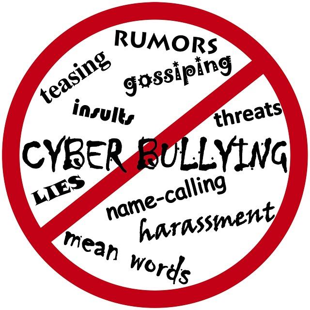 Cyberbullismo, la brutta faccia del web